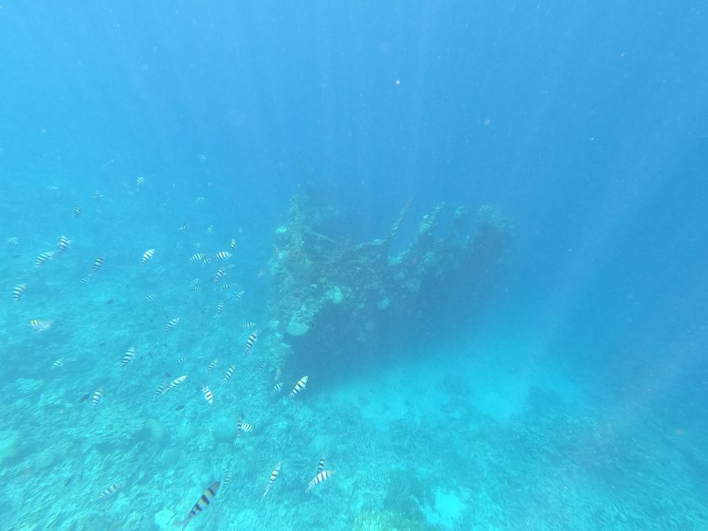Snorkeling on your Philippines itinerary - 3 weeks